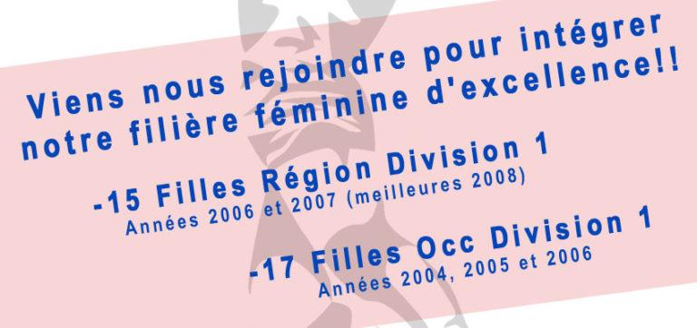 Projet Handball Féminin d'Excellence Saison 2020-2021